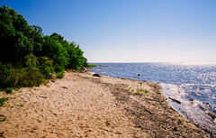 Lake of the Woods Beach - Birch Point Provincial Park (Tony Webster) Tags: birchpointprovincialpark canada lakeofthewoods manitoba beach lake buffalopoint ca