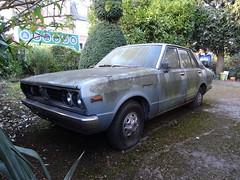 Datsun 160J Violet (Neil's classics) Tags: vehicle abandoned datsun 160j violet