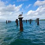 Perch, Sabana de la Mar thumbnail