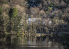 The House - Loch Eck Dec 2017 (GOR44Photographic@Gmail.com) Tags: house scotland argyll cowal reflection trees winter gor44 green snow omdem5 olympus panasonic 45150mmf456 loch eck water