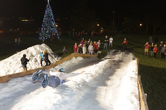 FSC WinterFest25 (fsc.mocs) Tags: lakeland florida