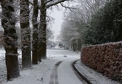 On a snow walk in the neighbourhood (joeke pieters) Tags: 1370638 panasonicdmcfz150 woold winterswijk gelderland nederland netherlands holland achterhoek sneeuw snow snowscape landelijk rural landschap landscape landschaft paysage