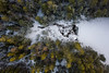 Winter stream (kaifr) Tags: trees drone birdseyeview forest stream fozen path cold outlet creel snow oslo norway no