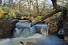 Mountain Stream (eric robb niven) Tags: ericrobbniven scotland perthshire dunkeld stream waterfall winter