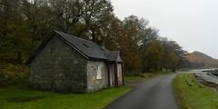 Pier Cottage, Kingairloch, Lochaber, Nov 2017 (allanmaciver) Tags: kingairloch old pier cottage road damp remote lochaber scotland trees shelter estate allanmaciver