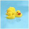 Pool 2017 #25; The Natural History of Rubber Ducks (hamsiksa) Tags: ducks toyducks ducktoys rubberducks rubberduckies duckies yellow rubber tub bathtub pool pools swimmingpools reflections thenaturalhistoryofrubberducks suburbia backyardpools