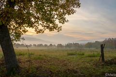2__.jpg (Nu Mero) Tags: coucherdesoleil brouillard valléedevillé paysage brume leverdesoleil sunrise sunset neubois grandest france fr