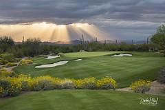 Estancia - Hole #3 (facebook.com/michaelpaulphotoworks) Tags: golf arizona scottsdale weather clouds sun raysoflight sunset green tomfazio nikon flowers yellow golfcourse phoenix southwest spring top100