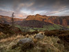 First light on the Pikes (tdove77) Tags: langdale pikes harrison stickle pavey ark great mickleden lone tree lumix panasonic gh3 micro four thirds mirrorless nd graduated filter lakes cumbria lee filters