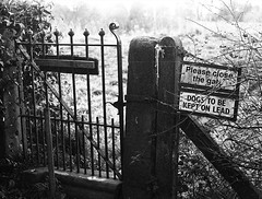 Winter Walk Gate (Man with Red Eyes) Tags: gate sign walk berggerpancro400 pyrocathd 11100 16mins 70f leicam2 zeissplanar50mm homedeveloped analog analogue blackwhite monochrome silverhalide sunnysixteen filmtest