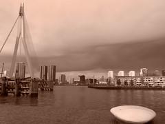 Rotterdam in sepia (STEHOUWER AND RECIO) Tags: sepia monochrome rotterdam erasmusbrug maas city skyline view river water bridge brug stad netherlands nederland holland southholland weather architecture