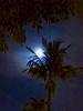 Maui 2017 (sctcroft) Tags: moon maui 2017 wailea hawaii