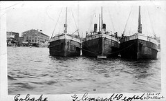 Steamers 'Cobaki', 'Glenreagh' and 'Doepel'  laid up in Sydney Harbour during the 1930s (Great Lakes Manning River Shipping NSW) Tags: ernestwrightbst glenreaghewsyt ernestwright glenreagh glmrsnsw coastaltrader midnorthcoast australia tuncurry wrightshipst greatlakesnsw nswgreatlakes capehawkeharbour woodenship ernestwrightshipyards coastalsteamer allentaylorco northcoaststeamnavigationcoltd nsw ssglenreagh sscobaki ssdoepel