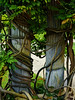 Strangulation (Steve Taylor (Photography)) Tags: vine wisteria art digital column brown green grey uk gb england greatbritain unitedkingdom london plant leaves eltham elthampalace italian