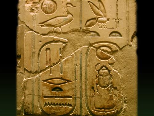 "Museo Metropolitano de Arte  Nueva York, EUA • <a style=""font-size:0.8em;"" href=""http://www.flickr.com/photos/30735181@N00/25025856708/"" target=""_blank"">View on Flickr</a>"