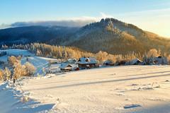 Winter (Jacek Pelczar) Tags: winter snow mountains beskidy poland forest zima góry śnieg polska