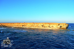 Small Brother Island (ShaunMYeo) Tags: egypt egipte egjipt مصر եգիպտոս misir egipto егіпет মিশর egipat египет 埃及 egypten egypte egiptujo egiptus ehipto egypti exipto ეგვიპტეში ägypten αίγυπτοσ ઇજીપ્ટ misira מצרים मिस्र egyiptom egyptaland mesir egittoエジプト ಈಜಿಪ್ಟ್ мысыр ប្រទេសអេហ្ស៊ីប 이집트 ອີຢິບ ēģipte egiptas ejipta ഈജിപ്ത് eġittu ihipa इजिप्त मिश्र egipt egito ਮਿਸਰ египат egepeta ඊජිප්තුවේ masar misri миср எகிப்து ఈజిప్ట్ อียิปต์ mısır єгипет misr egipti redsea