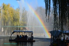 Rainbow in europapark - Germany (khalid.lebdioui) Tags: photo photography photographer view rainbow germany deutschland europe nikon d5200 flickr yellow red blue halloween sky landscape discovery nature october autumn