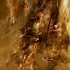 Bonfire [308/365 2017] (_ _steven.kemp_ _) Tags: swanton morley firework display bonfire fireworks guy fawkes night fire wood