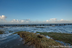 Peasens Moddergat (Chantal van Breugel) Tags: herfst landschap zee noordoostfriesland friesland moddergat peasens oktober 2017 canon5dmark111 canon1635
