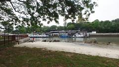 Shore at Changi Point (wildsingapore) Tags: changi carpark1 landscape shore singapore marine intertidal seashore marinelife nature wildlife underwater wildsingapore