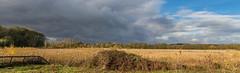 Autumn Showers (iantaylor19) Tags: brandon marsh warwickshire wildlife trust autumn
