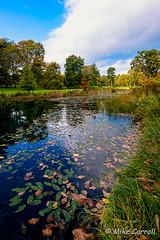 Thorp Perrow Arboretum (carrmp) Tags: water thorp perrow yorkshire england uk