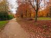Virginia Water in Autumn-EB160379 (tony.rummery) Tags: autumn autumncolours em10 mft microfourthirds omd olympus path surrey trees virginiawater runnymededistrict england unitedkingdom gb