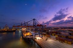 Bajo la luna (Paco Herrero) Tags: spreader noatum puerto port sunset atardecer cielo sky muelle pier dock gruas cranes bluehour horaazul