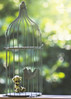 button does not like bird cages (rockinmonique) Tags: button bear teddybear birdcage bokeh juneflickrgalsmeetup green gold light fortlangley chrissbackyard moniquew canon canont6s tamron copyright2017moniquew