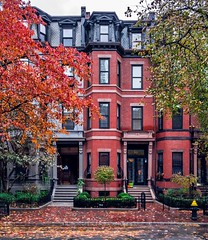 Back Bay in late November ((Jessica)) Tags: brownstones newengland colorful autumn tree foliage street massachusetts cityscape trees city boston fall backbay