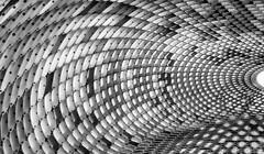 organic geometry (MAICN) Tags: sculpture bw architektur blackwhite monochrome geometrisch kunst schwarzweis art mono organisch einfarbig sw geometry organic
