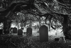 The Sound of Silence (Ffotograffiaeth Dylan Arnold Photography) Tags: graveyard blackandwhite noir dark sinister creepy gravestones headstones death dead yewtrees trees overgrown abandoned derelict bethesda spooky forest canon eos 6d