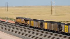 Thunder Basin Coal (string_bass_dave) Tags: coaltrain usa wy coal unionpacific train thunderbasin tracks up coalcar wyoming flickr railroad douglas unitedstates us