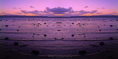 Turning The Tide (Rollingstone1) Tags: helensburgh scotland firthofclyde pink lilac orange colour vivid canute sea shore seashore tide water sky nature marine beach sunset dusk hills mountain sand seascape clouds artdigital
