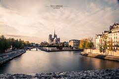 Notre Dame de Paris (Téo Correas) Tags: paris shoot canon 70 d model petite ceinture longue pose urban parisian parisien shooting night black white photography photographie noir et blanc sunset