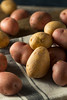 Raw Organic Mixed Baby Potatoes (brent.hofacker) Tags: agriculture baby babypotato babypotatoes background brown burlap carbohydrate crop delicious diet food fresh group harvest health healthy heap ingredient natural nutrition nutritious organic pile plant potato potatoes raw root rustic small starch sweet tasty tuber vegan vegetable vegetarian yellow young