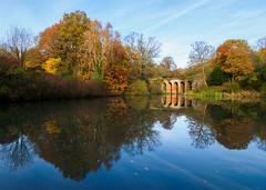 Hampstead Heath - Viaduct Pond (adairfarrar) Tags: london england unitedkingdom gb olympus omd em1 mk2 hampstead heath autumn