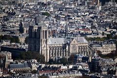 Notre Dame de Paris (Loanne Lo ou Lolo) Tags: notredamedeparis monument paris vuedenhaut france cathédrale