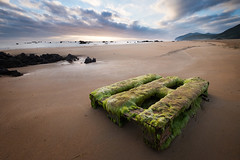 Overgrown with algae wooden Pallet on the beautiful sand beach near Noja, Spain , as a symbol of Human's presence anywhere :( (CreativePhotoTeam.com) Tags: outdoor human rubbish coast pollute shore nobody green spain travel polluted pollution pallet concept sand lost civilization scenery ecology summer old waste trash wave damage tide beach problem low seaweed marine garbage seascape sky bay scenic tourism sea wooden vintage overgrown beautiful nature coastline environment algae landscape ocean noja cantabria