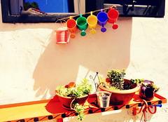 good vibes only -And why do you take pictures? (7DWF Crazy Tuesday theme) (Bambola 2012) Tags: europe europa hrvatska croatia croazia dalmatia dalmacija dalmazia šibenik flowers fiori cvijeće window finestra prozor colorful variopinto šareno ljeto summer estate