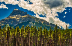 Mountain's Majesty (FotoGrazio) Tags: alberta calgary canada hdr highdynamicrange pinetrees rockymountains waynegrazio waynesgrazio beautiful clouds composition fotograzio internationalphotographers landscape magestic mountain nature scenic sky trees