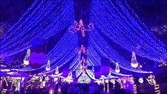 Natal Luz, Gramado (Francisco Aragão) Tags: natalluz gramado riograndedosul brasil franciscoaragão fotografo noite luzes natal rs fotonoturna serragaúcha cores brazil cellphone fotografiadecelular sonyxperia natal2017