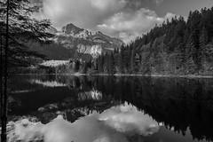 Lago di Tovel (el_mo) Tags: verde valdinon lagoditovel trentino romedio santuario sanromedio reflections mountains adamello brenta dolomiti dolomites alpi alps