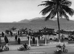 Nha Trang Beach - Biển Nha Trang - 1965 (Nguyen Ba Khiem) Tags: 1960s 1965 hìnhảnhxưa việtnam việtnamxưa nhatrang nhatrangxưa nguyễnbámậu phongcảnh biển nước dừa xíchlô côngviên đườngphố