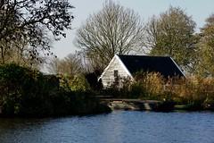 DSC06000 (hofsteej) Tags: middendelfland holland zuidholland netherlands vlaardingervaart broekpolder natuurmonumenten