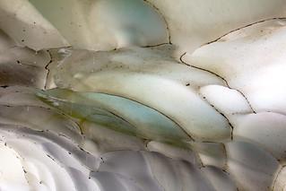 Abstract ice art