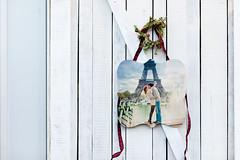 PhotoBarn_Christmas_112117_RC_FINCH-122 (photobarnpics) Tags: shaped whimsical photoboard christmas 6x6 12x12