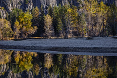 Fall Reflection Along the Merced (Jeffrey Sullivan) Tags: fall colors workshop yosemite nationalpark photography landscape travel california usa nature canon eos 6d photo copyright november 2017 jeff sullivan unitedstates sierranevada national park united states morning fog mist weather