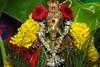 Ganesh Puja @ YVG, Uttarkashi (amavivek) Tags: ganesha puja ganapati homam swami ananda saraswati homa vinayaka chaturthi maha arati dhupa deepa prasad naivedya vilwa leaf kalasam purna kumbha
